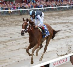 Personal Ensign Stakes Preview: Curalina Looks for Two in a Row