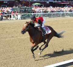Breeders' Cup Challenge Series Race Previews: Friday, October 7