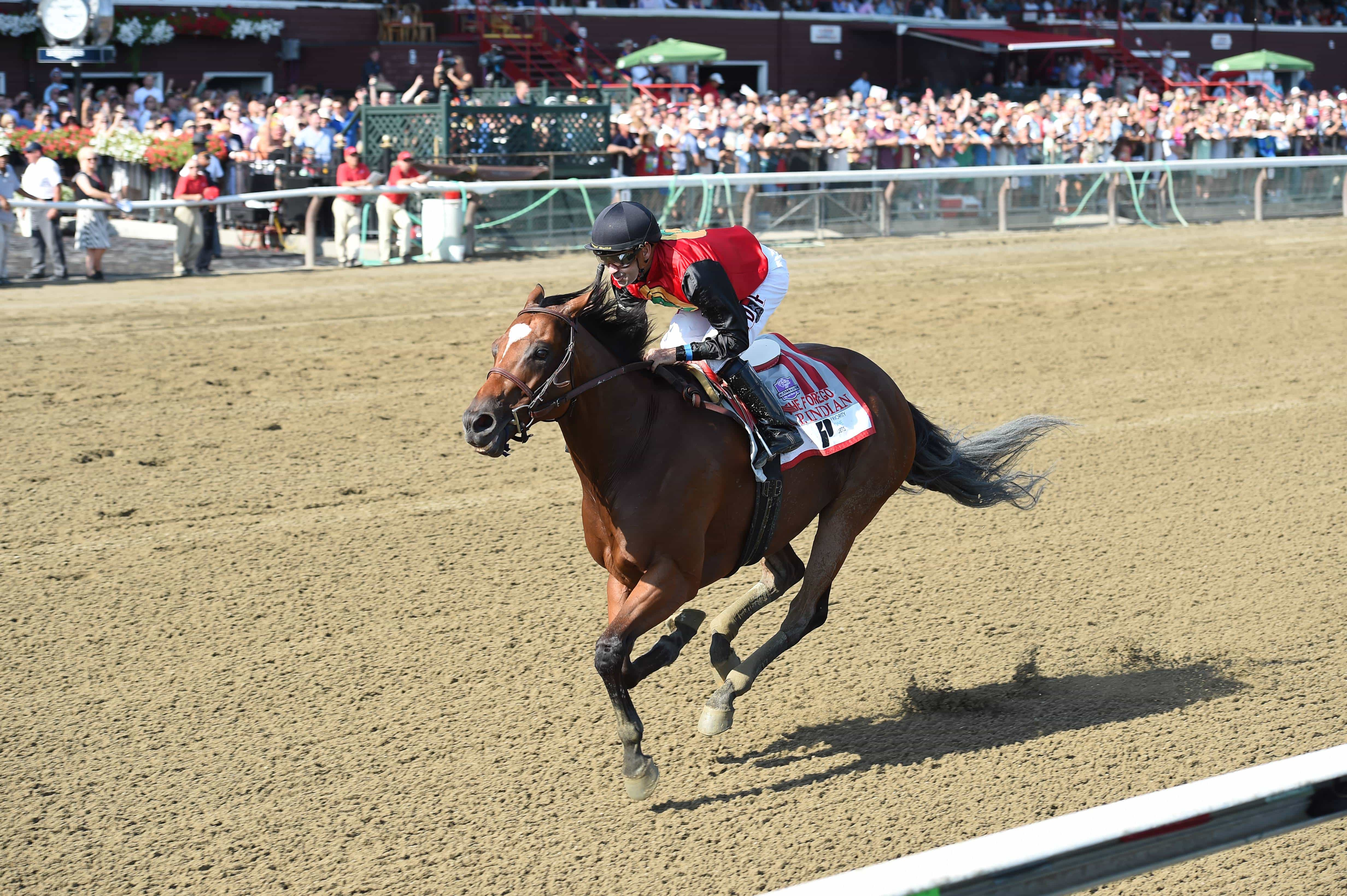 A.P. Indian wins G1 Priority One Jets Forego - Credit: Chelsea Durand/NYRA