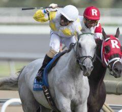 Camp Creek Stuns $500,000 Breeders' Stakes at Woodbine