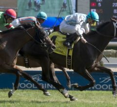 Glenville Gardens Upsets in G2 Play the King Stakes at Woodbine