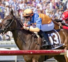 Sea Calisi Earns Breeders' Cup Ticket With Victory in G1 Beverly D.