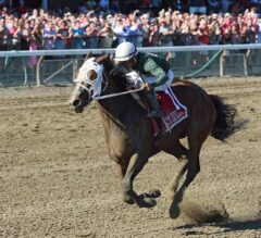 Paola Queen Shocks G1 Test With 55-1 Victory at Saratoga