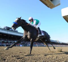 Top 5 Horse Racing Events of 2017