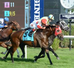 Camelot Kitten Noses out Airoforce to Take G2 Hall of Fame