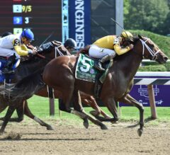Cavorting Wins G1 Personal Ensign in Blanket Finish