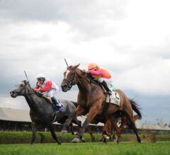 Fourstardave Preview: No Rain in Sight for Redrawn Race