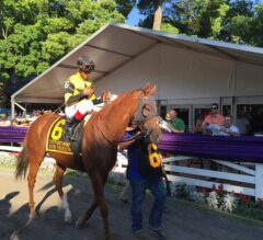 Saratoga Closing Weekend JUMP START