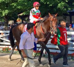 2016 Travers Stakes JUMP START (Part 2)