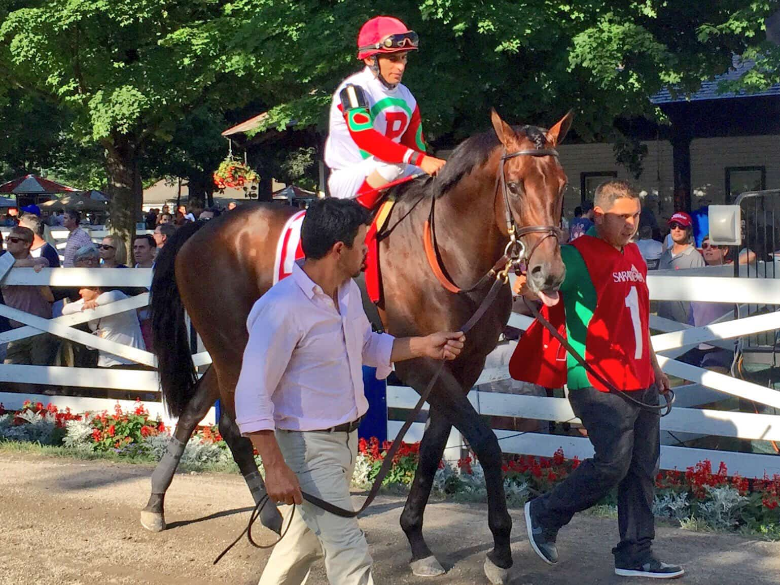 """Connect before winning the Curlin Stakes is a """"new face"""" but threat to win Travers (Photo: Michael Spector)"""