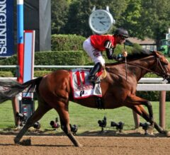 TRAVERS DAY LIVE BLOG!