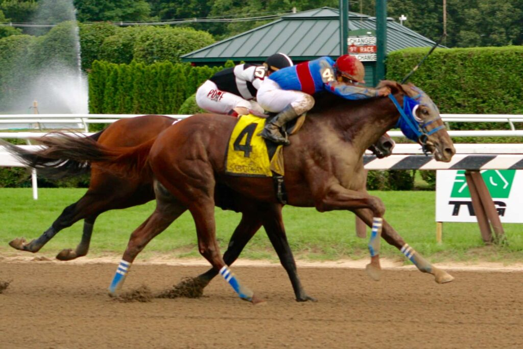 Gunnevera winning Saratoga Special (Photo: Michael Spector)
