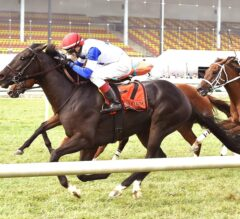 Blacktype Sets Course Record With G2 Commonwealth Turf Cup Win