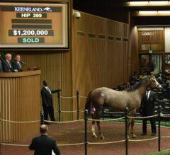 $1.2 Million Tapit Colt Leads Keeneland September Yearling Sale