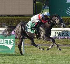 On Leave Impressive in Front-Running G2 Sands Point Victory