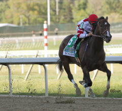Songbird Stays Undefeated in Dominating G1 Cotillion Stakes Win