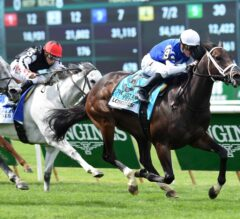 Woodbine Notes: Early Look at G1 Ricoh Woodbine Mile