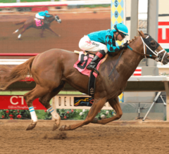 Del Mar Futurity Preview: Two-Year-Old Showdown