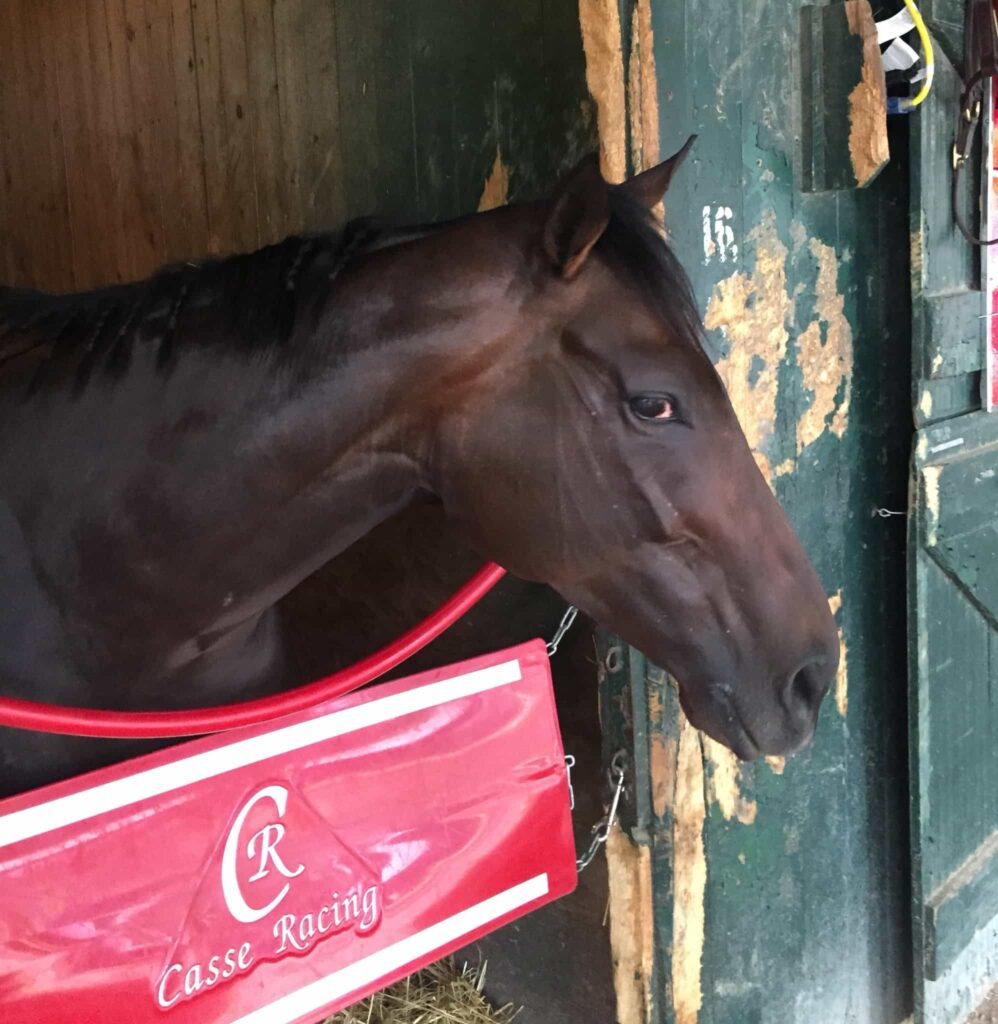 Tepin side eye is the mark of a focused champ (Photo: Michael Spector)