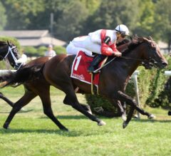 Inspector Lynley Rallies Late to Take G3 Saranac over Camelot Kitten
