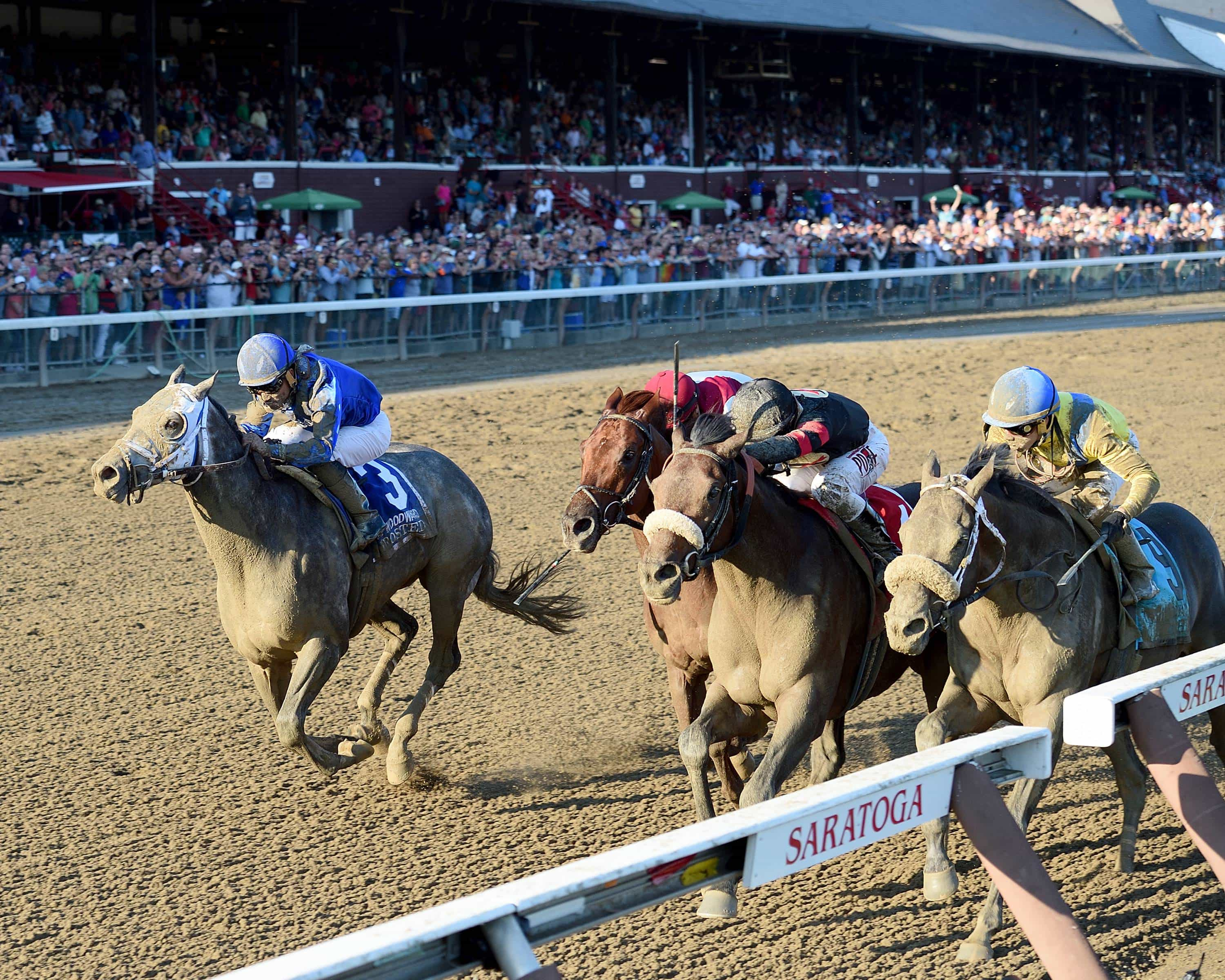 Shaman Ghost (center) wins G1 Woodward over Frosted (left) - Credit Chelsea Durand/NYRA