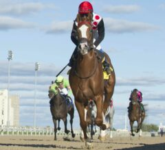 Golden Hawk Remains Undefeated in G3 Grey Stakes at Woodbine