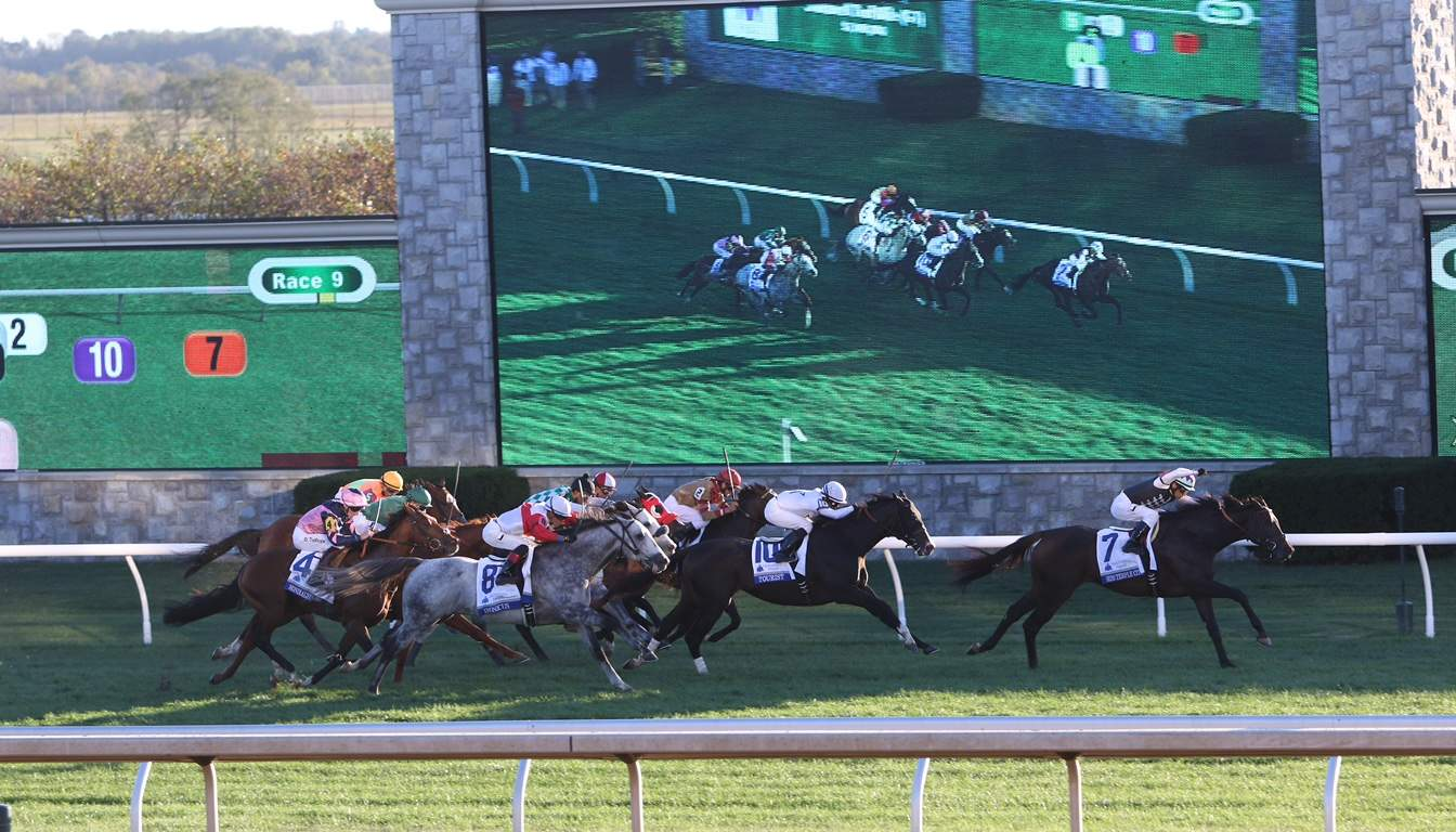 Top 10 Wagering Angles In Racing Thoroughbred Racing Dudes