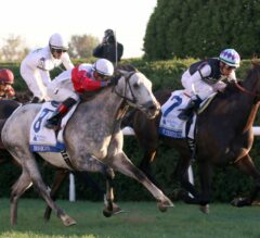 Miss Temple City Holds off Ironicus to Win G1 Shadwell Turf Mile