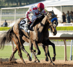 Noted and Quoted Impressive in G1 Chandelier [Replay and Quotes]