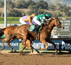Breeders' Cup Distaff Preview: The Ladies Steal the Show