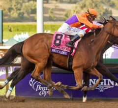 Beholder Beats Songbird by Nose in Epic Breeders' Cup Distaff