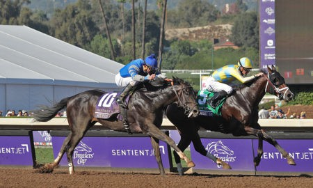 Classic Empire and Not This Time - Sentient Jet Breeders' Cup Juvenile - Santa Anita Park - Racing Dudes Photo