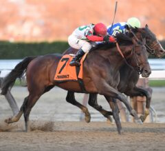 Connect Earns First G1 Victory in Hard-Fought Cigar Mile