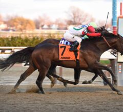 Aqueduct Notes: Connect Exits G1 Cigar Mile Victory in Good Shape