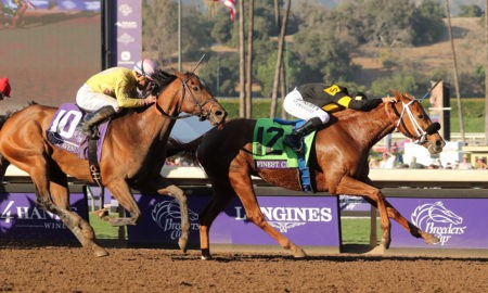 Finest City - Breeders' Cup Filly and Mare Sprint - Santa Anita Park - Racing Dudes Photo