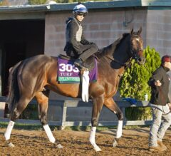 Breeders' Cup Notes: Turf, Mile, Filly & Mare Turf