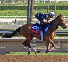Trainers Poised for Big Day at the Breeders' Cup