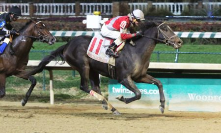 McCraken-the-kentucky-jockey-club-gr-ii-90th-running-11-26-16-r11-cd-fin-Photo Credit: Churchill Downs/Coady Photography