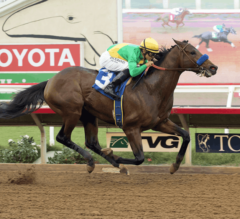 San Felipe Stakes Preview: Mastery Makes 3-Year-Old Debut