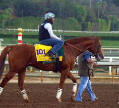 Breeders' Cup Notes: Classic and Distaff