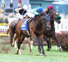 Lady Fog Horn Wins G2 Falls City 'Cap, Thatcher Street Victorious in G3 River City