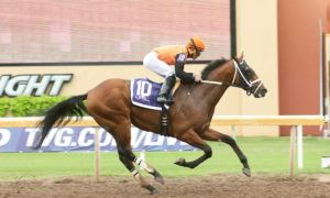 Cool Arrow, winner of the $75,000 Kip Deville Stakes in September at Remington Park - Photo credit: Dustin Orona