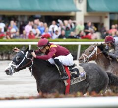 Tampa Bay Derby Preview: Tapwrit Takes Center Stage