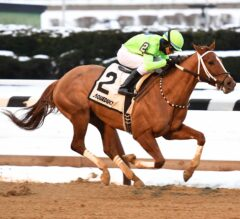 War Story Impressive in $125,000 Queens Count at Aqueduct