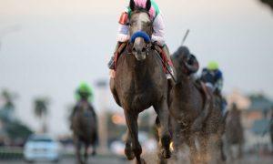 Arrogate wins the Pegasus World Cup Invitational - Gulfstream Park - Adam Coglianese Photography