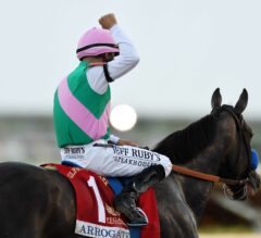 Top 5 Storylines Heading into the 2017 Breeders' Cup
