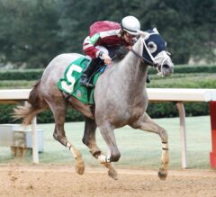 Chanel's Legacy Shakes Clear in $125,000 Dixie Belle Stakes