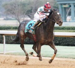 Domain's Rap Kicks off Opening Day With Win in Fifth Season