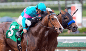 Gormley beats American Anthem by head - G3 Sham Stakes - Santa Anita Park - Zoe Metz Photography
