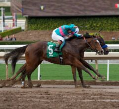 Five Kentucky Derby Horses With NO CHANCE of Winning